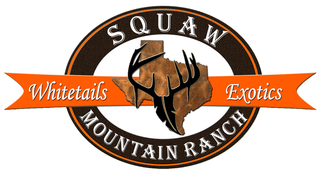 Squaw Mountain Ranch whitetails exotics logo